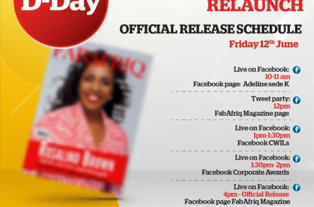 Edition : FABAFRIQ MAGAZINE LE GRAND RETOUR !