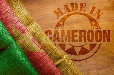 Rencontre business : des produits made in Cameroon en exposition au Douala Grand Mall